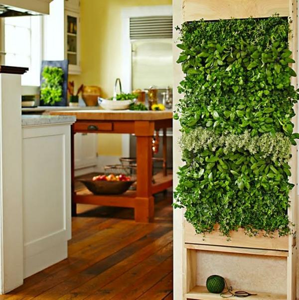 épice-pour-cuisine-verticale-jardin