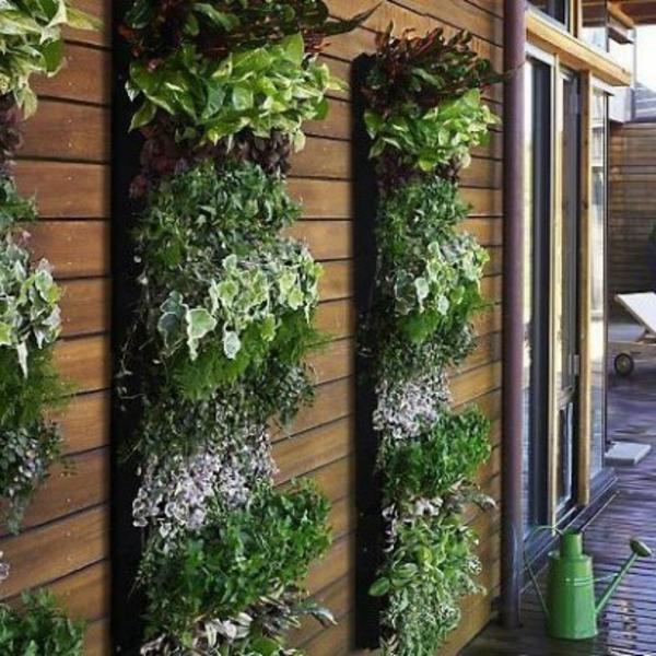 bois-jardin-épice-verticale