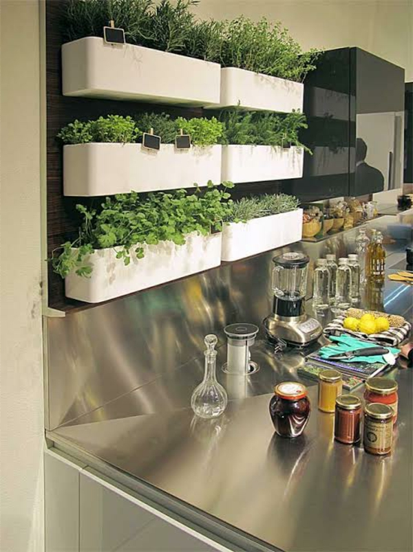 cuisine-jardin-murale-épice-vivant
