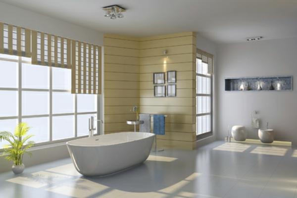 Salle de bain : Toilettes, baignoire, douches et meubles