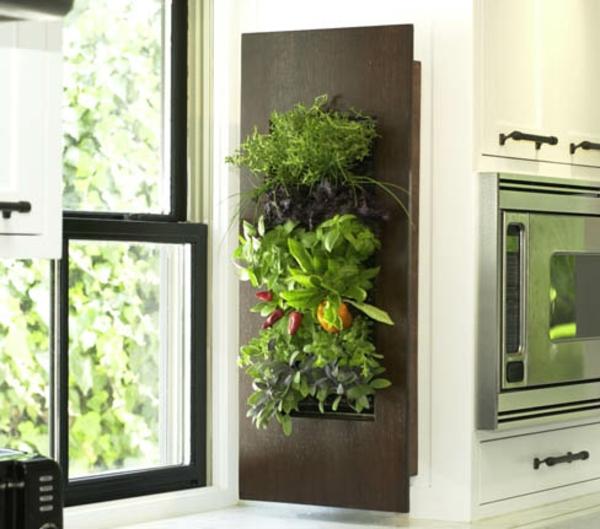jardin-vertical-épices-naturelles