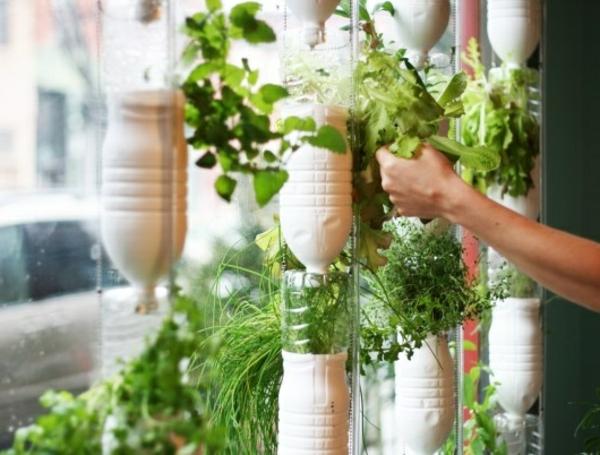 jardin-vertical-bois