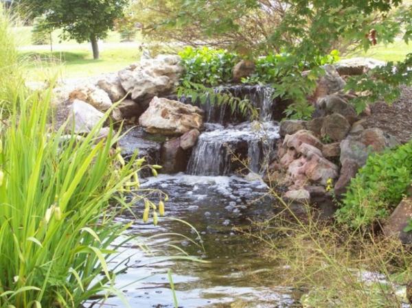 étang-naturel-jardin-cascade