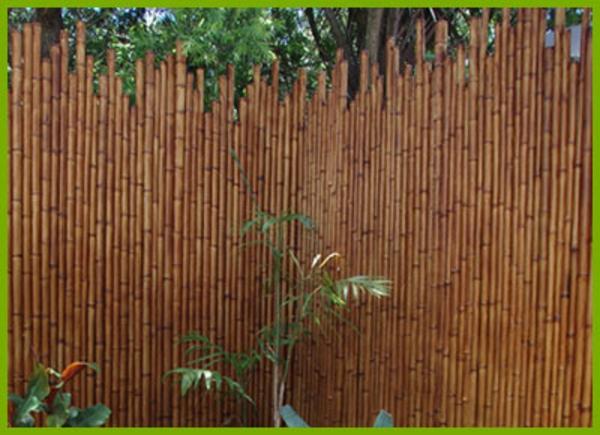 bamboo-clôture-pour-jardin