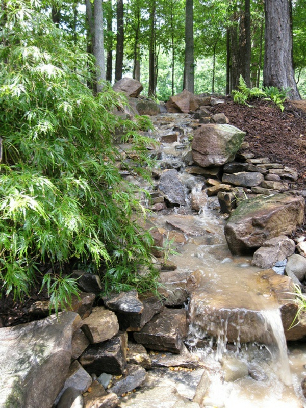 cascade-de-jardin-avec-un-forêt-autour
