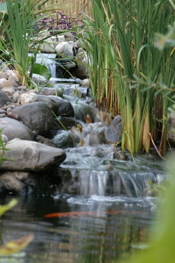 Cascade et fontaine de jardin 69 d co pour les moments - Fontaine de jardin zen ...