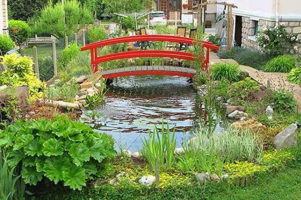 27 id s pour le bassin de jardin pr form hors sol for Plante bassin exterieur