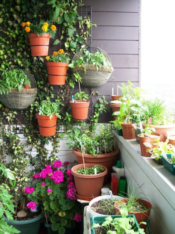 balcon-amenagement-petit-jardin
