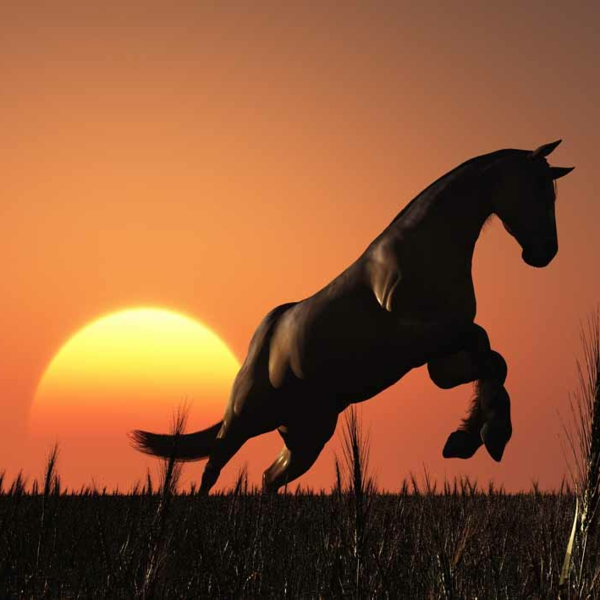 chantemure-cheval-poster