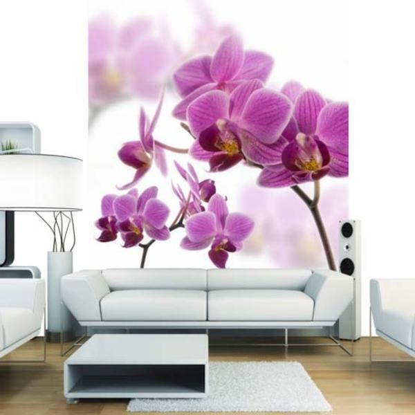 chantemure-fleur-blanc-