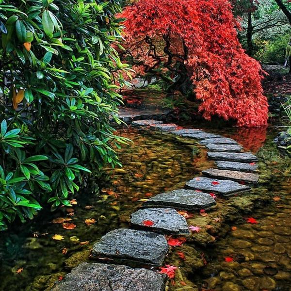 jardin-japonais-sentier-de-pierre