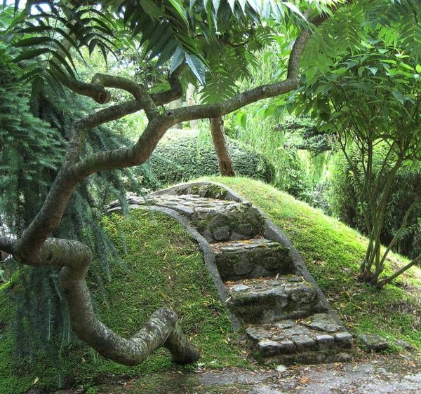 jardin-japonais-verdure