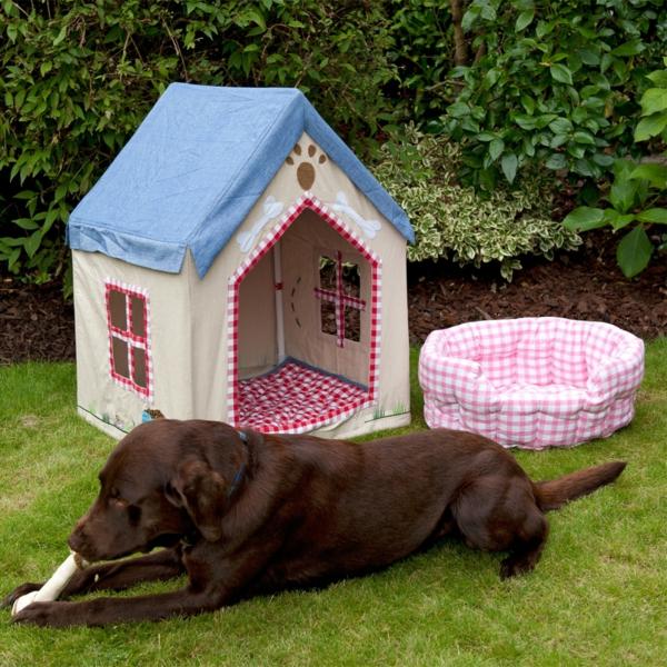 maison-pour-chien-extérieur