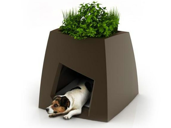 niche-pour-chien-extérieur-jardin-toit