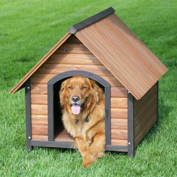 Maisonnette en bois pour chien - Fabrication niche en bois pour chien ...