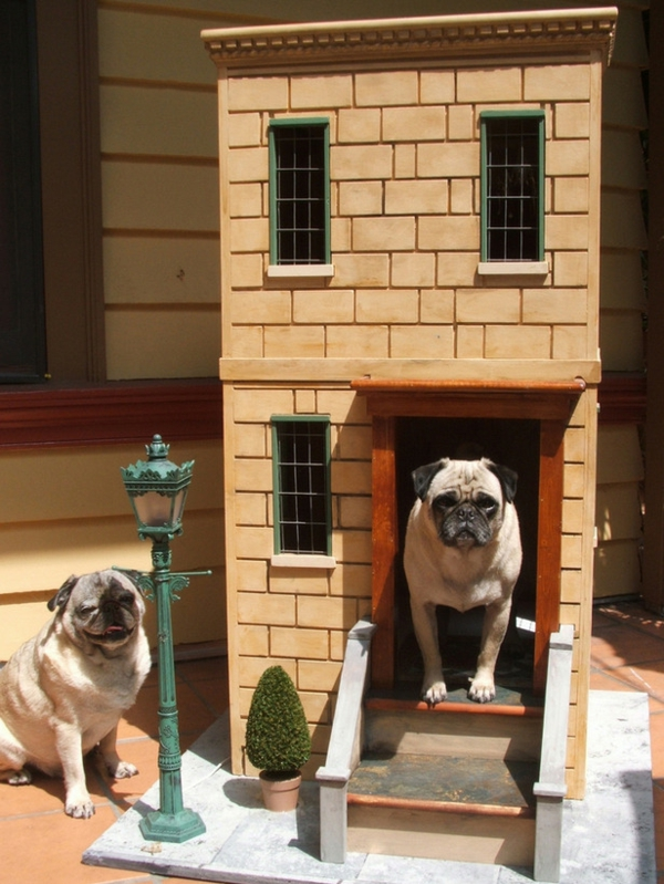 niche-pour-chiens-original