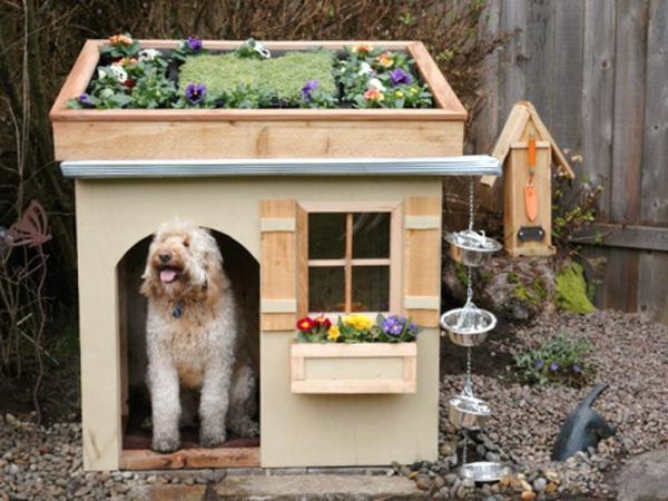 niche-pour-gros-chien-maison-jardin-toit
