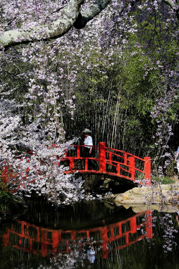 pont-rouge-typique-japonais