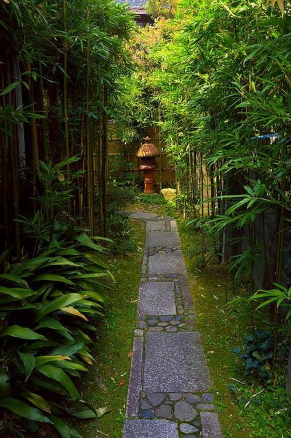 sentierjardin-japonais-bambou