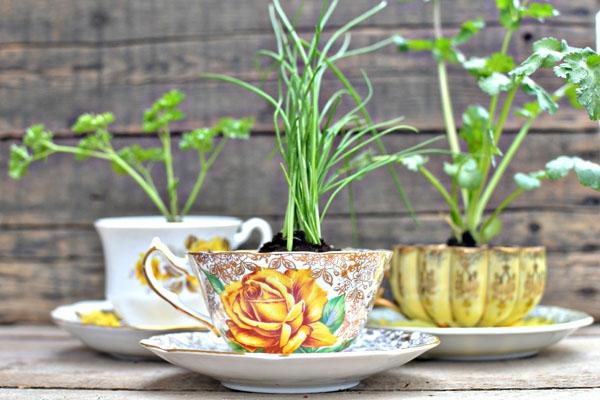 tasse-de-thé-florale-pot-de-feur-design