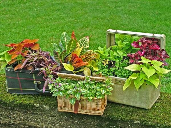 Vous voulez un original pot de fleur design pour le jardin for Decoration jardin pas chere