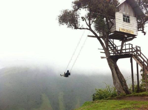cabane-dans-les-arbres-intéresssant