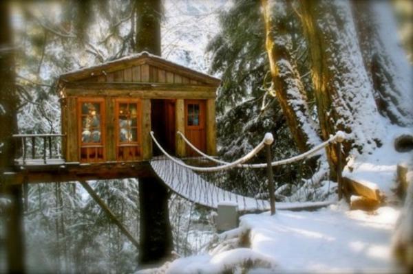 cabane-dans-les-arbres-pont-