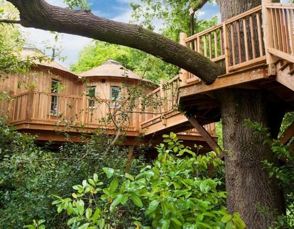 cabanes-dans-les-arbres