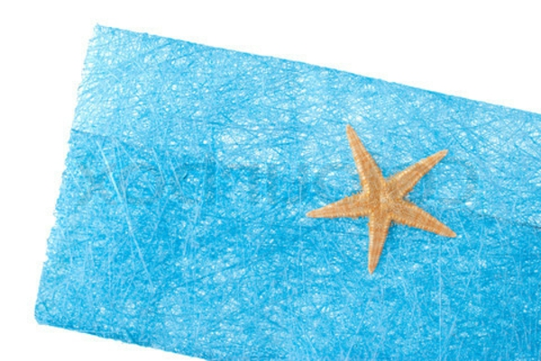 Sea star blue envelope