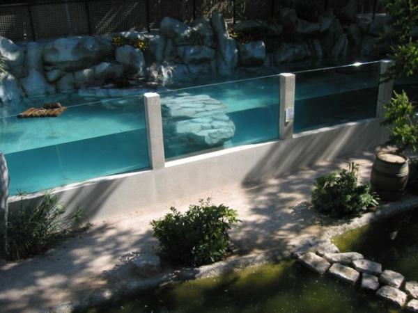 eux-et-piscines-vintage-verre