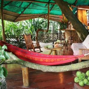 Une cabane dans les arbres luxe - nature et chic