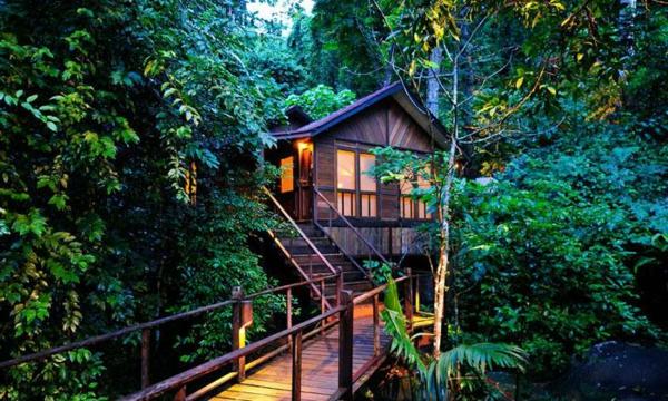 pont-cabane-dans-les-arbres