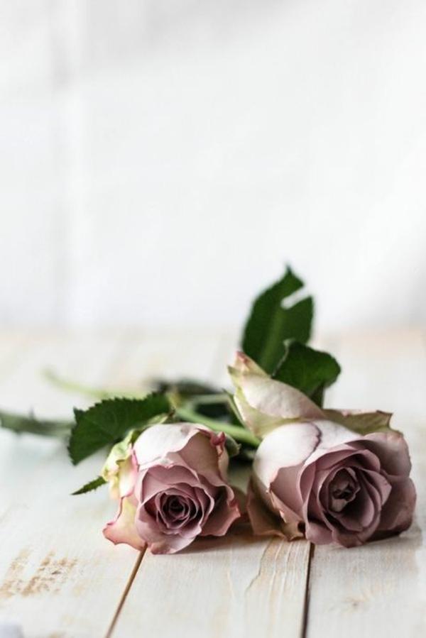 Les fleurs comme un objet deco vintage style for Objet deco rose pale
