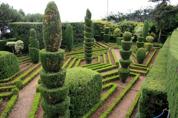 Funchal_Botanical_garden_IMG_1806-resized