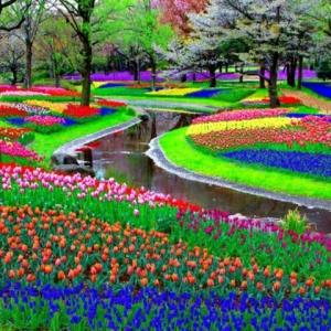Jardin d'été - décorations de plantes et fleurs remarquables