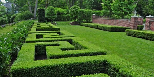 buchsbaum-formen-quadrat-resized