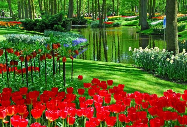 comment-planter-des-fleurs