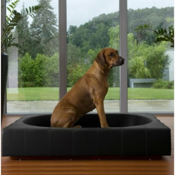 ... -canape-cuir-chien-grande-taille-lit-luxe-grand-chien-design-moderne
