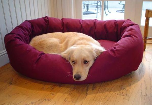 e tapis pour chien grande taille-bordeau