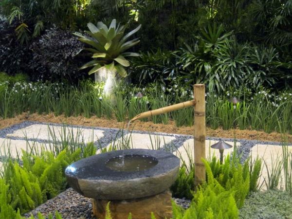 Des plantes originales pour le jardin zen for Deco jardin plantes