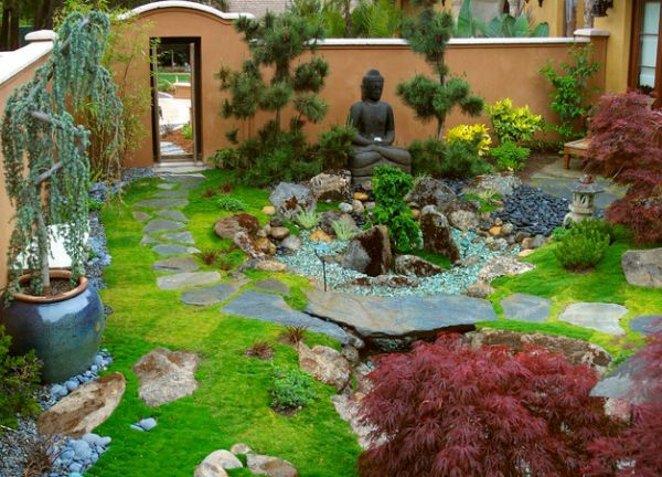 Des plantes originales pour le jardin zen for Plante jardin