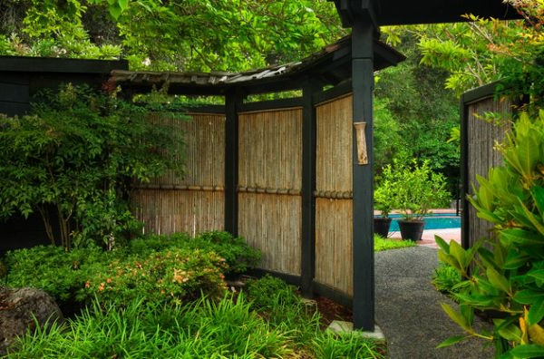naturel-bambou-plantes-originales