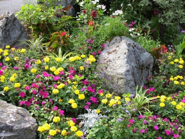 Jardin d 39 t d corations de plantes et fleurs - Image de rocaille ...