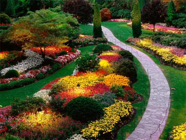 Jardin d 39 t d corations de plantes et fleurs remarquables - Planter des choux fleurs ...