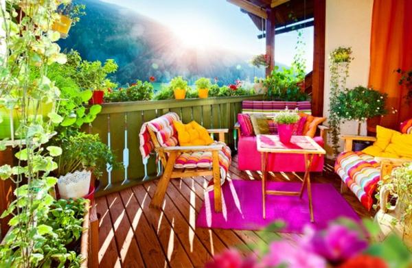 plantes grimpantes balcon en feerie de couleurs