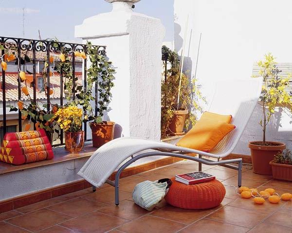 plantes-grimpantes-balcon-et-terrasse-grille-fer-resized