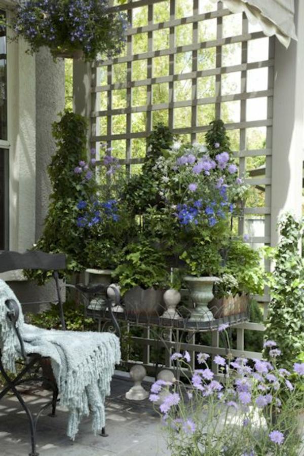 des plantes grimpantes pour balcon et terrasse on est. Black Bedroom Furniture Sets. Home Design Ideas