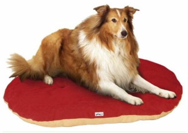 rouge-tais-pour-grand-chien