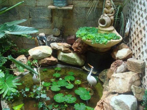 sympa-jardin-et-plantes-originales