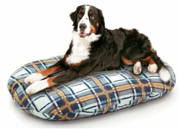 tapis-pour-chien-grande -aille